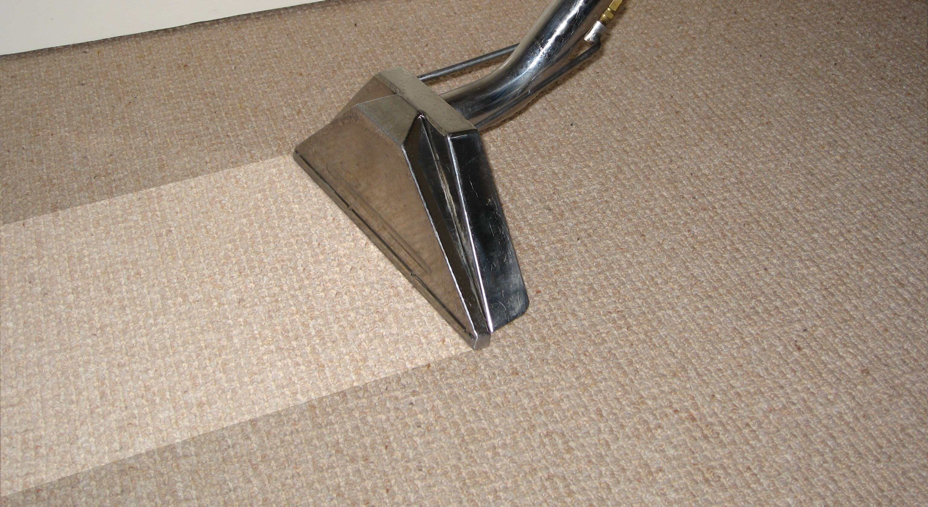 Carpet Cleaning - Carpet Pell City, Alabama